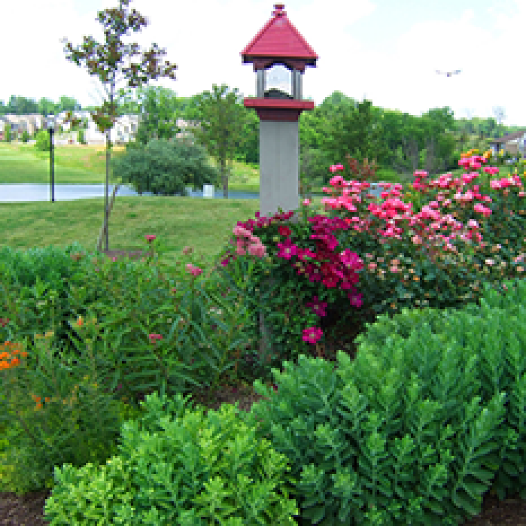 Sj Landscapes And Gardening Services: Landscaping Services